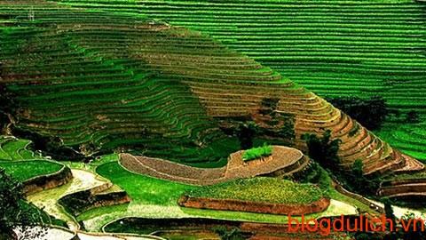 20130820103943-guongtroi1