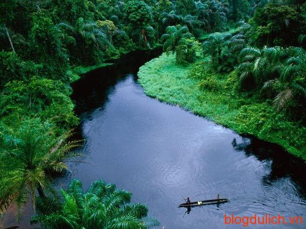 lòng chảo sông Congo