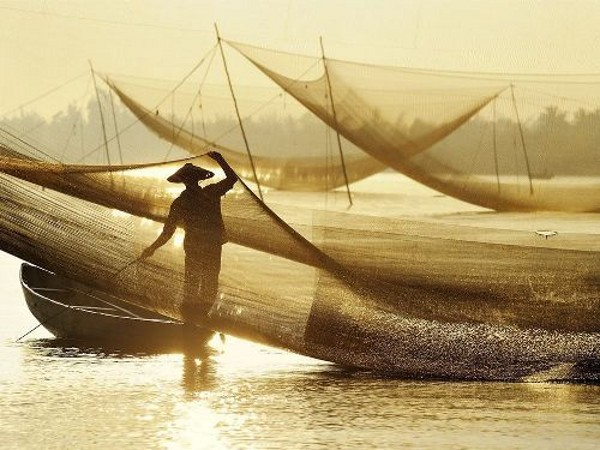 bắt cá trên biển cửa đại