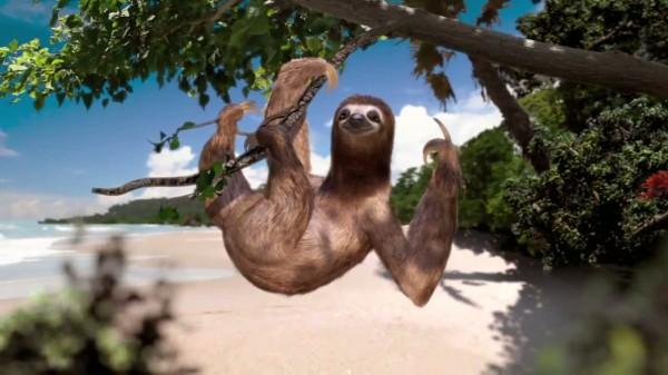 đi du lịch một mình Costa Rica
