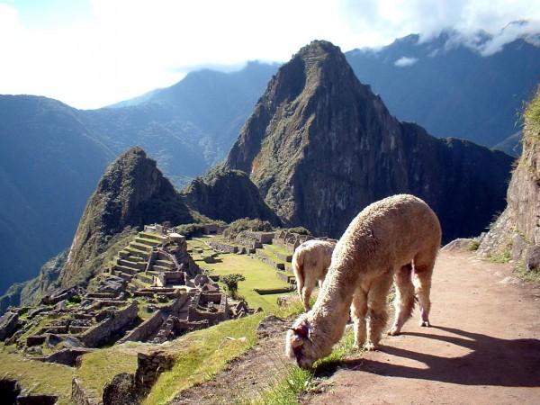 đi du lịch một mình Cusco Peru