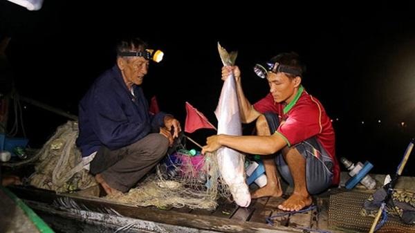 Trải nghiệm xe săn cá trên sông Vàm Nao