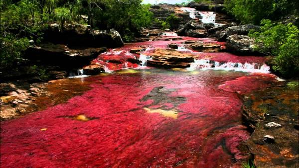 Dòng sông rực rỡ sắc màu
